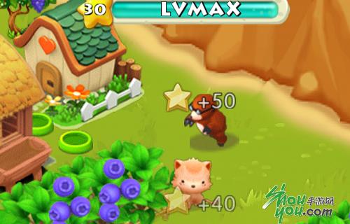萌爱动物园 《阿狸农场》可爱的小动物们